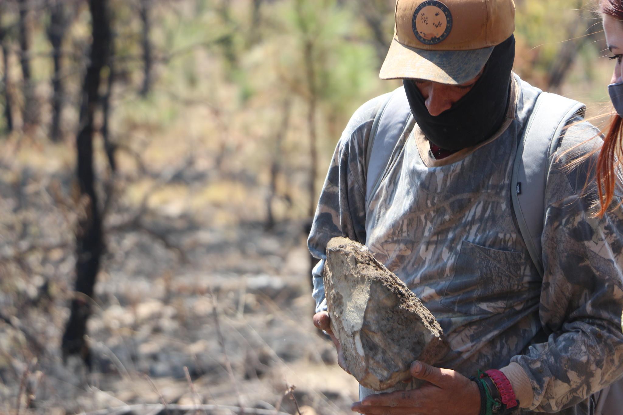Monitorean en zonas de La Primavera, afectadas por incendio, la fauna silvestre