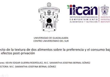 Destacan investigaciones del CUSur en Encuentro de Investigación en Comportamiento y Salud