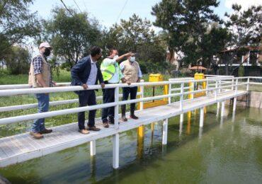 Mejoran las condiciones de la laguna de Cajititlán con trabajos de saneamiento